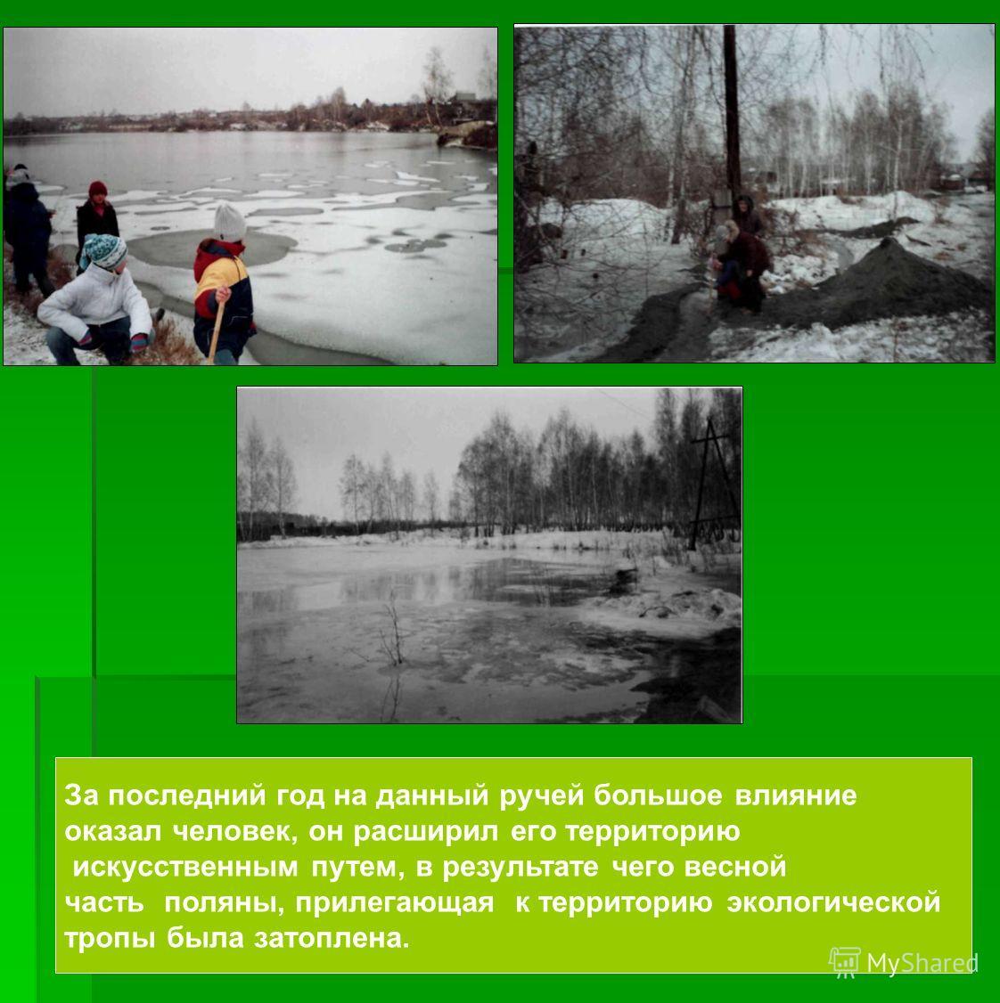 За последний год на данный ручей большое влияние оказал человек, он расширил его территорию искусственным путем, в результате чего весной часть поляны, прилегающая к территорию экологической тропы была затоплена.