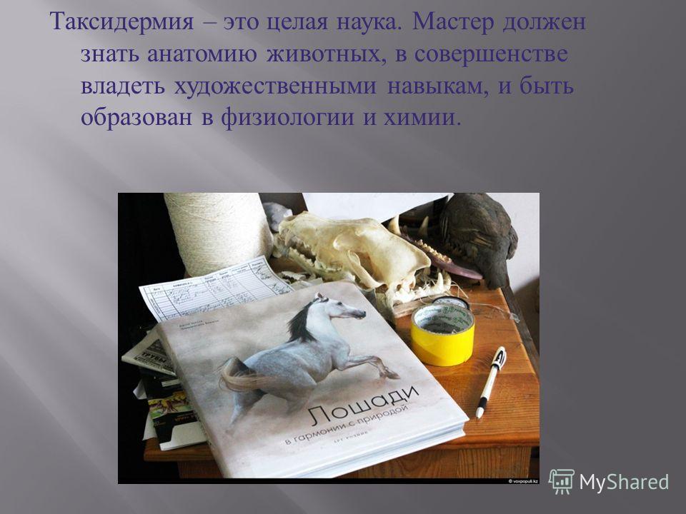 Таксидермия – это целая наука. Мастер должен знать анатомию животных, в совершенстве владеть художественными навыкам, и быть образован в физиологии и химии.