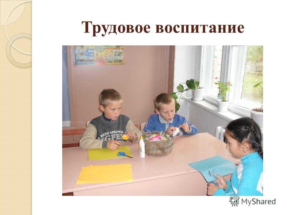 Трудовое воспитание