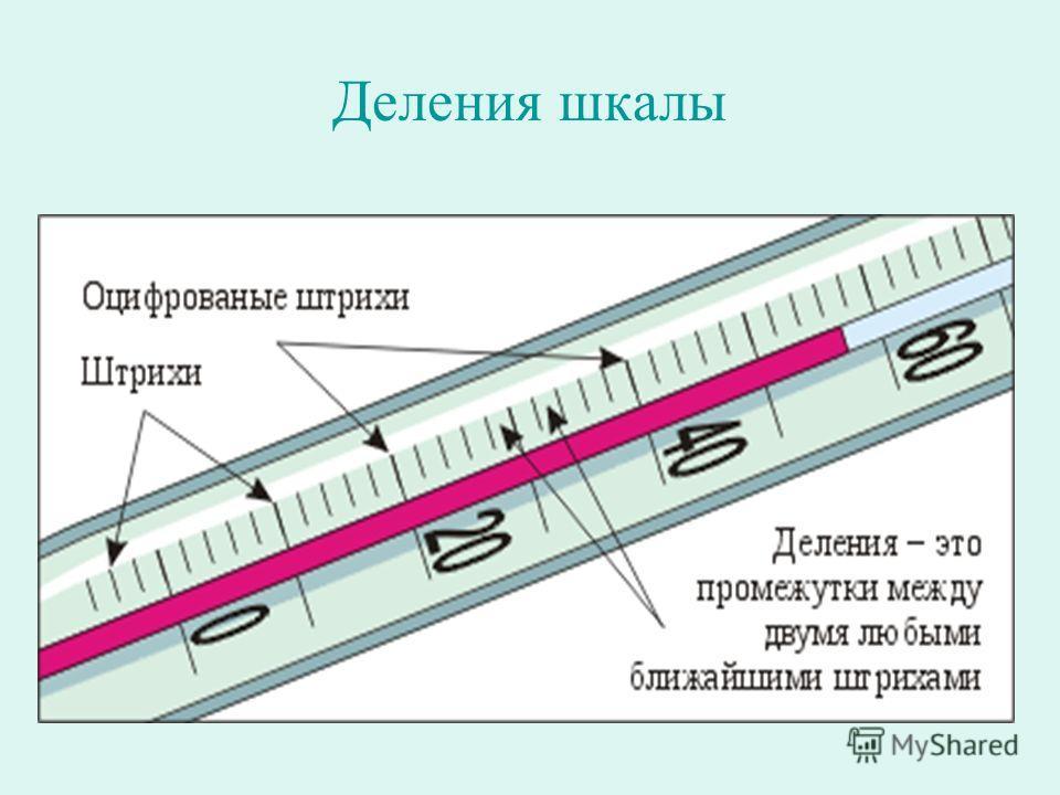 Деления шкалы