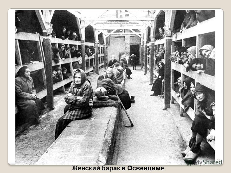 19 Женский барак в Освенциме