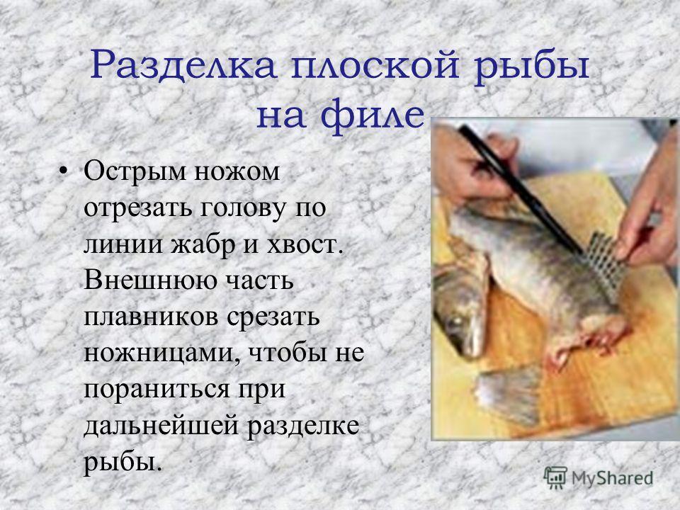 Разделка плоской рыбы на филе Острым ножом отрезать голову по линии жабр и хвост. Внешнюю часть плавников срезать ножницами, чтобы не пораниться при дальнейшей разделке рыбы.