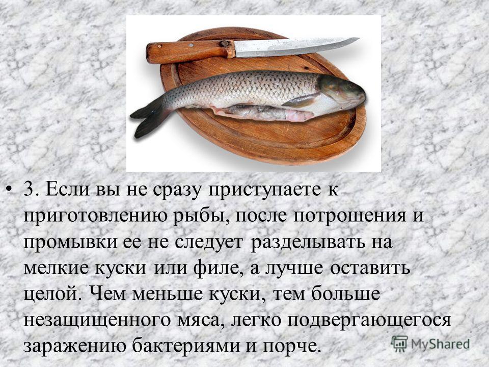 3. Если вы не сразу приступаете к приготовлению рыбы, после потрошения и промывки ее не следует разделывать на мелкие куски или филе, а лучше оставить целой. Чем меньше куски, тем больше незащищенного мяса, легко подвергающегося заражению бактериями