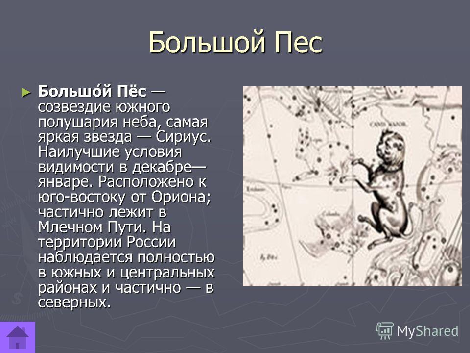 Большой Пес Большо́й Пёс созвездие южного полушария неба, самая яркая звезда Сириус. Наилучшие условия видимости в декабре январе. Расположено к юго-востоку от Ориона; частично лежит в Млечном Пути. На территории России наблюдается полностью в южных