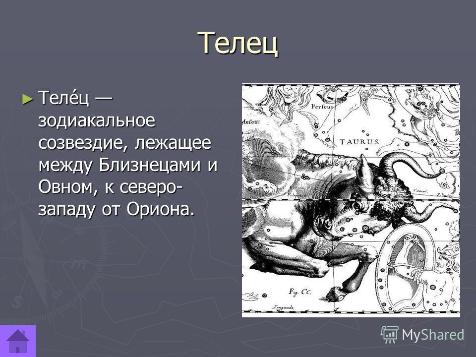 Телец Теле́ц зодиакальное созвездие, лежащее между Близнецами и Овном, к северо- западу от Ориона. Теле́ц зодиакальное созвездие, лежащее между Близнецами и Овном, к северо- западу от Ориона.