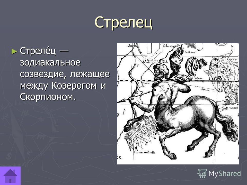 Стрелец Стреле́ц зодиакальное созвездие, лежащее между Козерогом и Скорпионом. Стреле́ц зодиакальное созвездие, лежащее между Козерогом и Скорпионом.