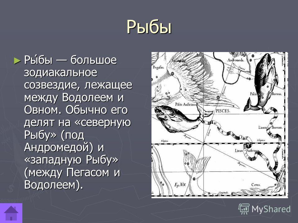 Рыбы Ры́бы большое зодиакальное созвездие, лежащее между Водолеем и Овном. Обычно его делят на «северную Рыбу» (под Андромедой) и «западную Рыбу» (между Пегасом и Водолеем). Ры́бы большое зодиакальное созвездие, лежащее между Водолеем и Овном. Обычно