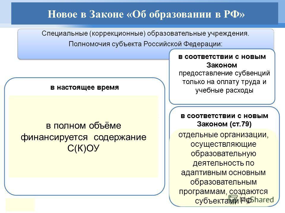 в полном объёме финансируется содержание С(К)ОУ отдельные организации, осуществляющие образовательную деятельность по адаптивным основным образовательным программам, создаются субъектами РФ Новое в Законе «Об образовании в РФ»