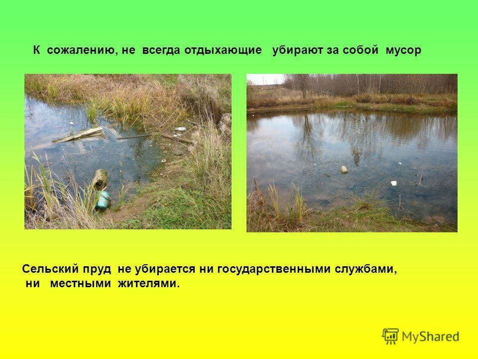 К сожалению, не всегда отдыхающие убирают за собой мусор Сельский пруд не убирается ни государственными службами, ни местными жителями.