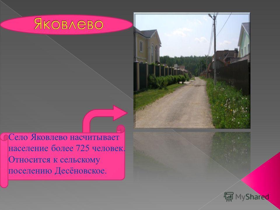 Село Яковлево насчитывает население более 725 человек. Относится к сельскому поселению Десёновское.