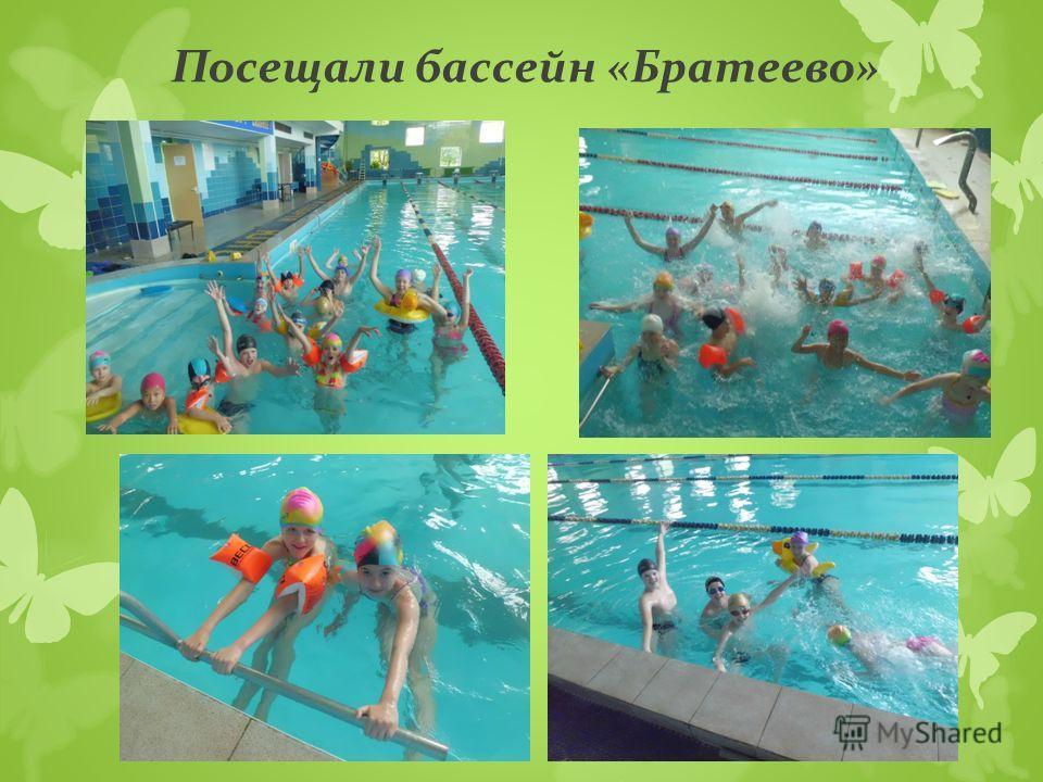 Посещали бассейн «Братеево»