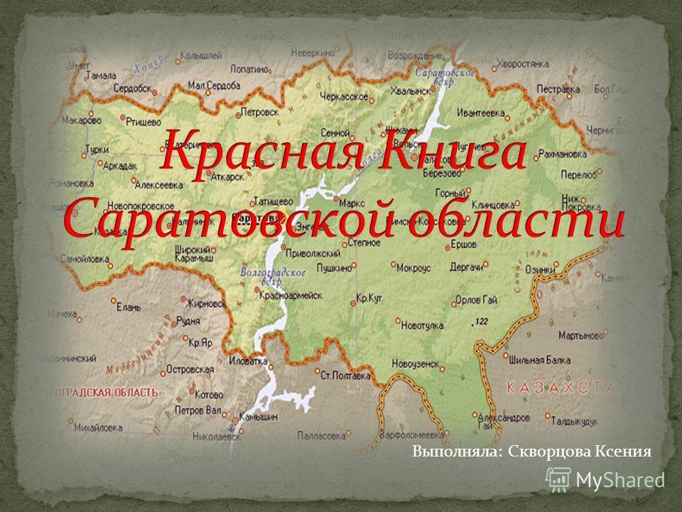 Выполняла: Скворцова Ксения