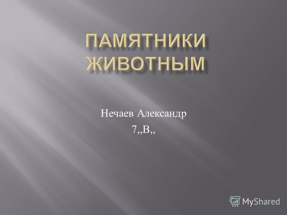 Нечаев Александр 7,, В,,