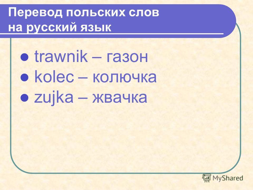 trawnik – газон kolec – колючка zujka – жвачка