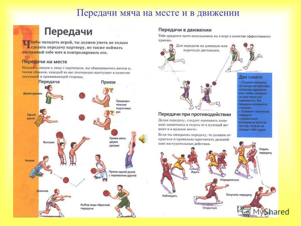 Передачи мяча на месте и в движении