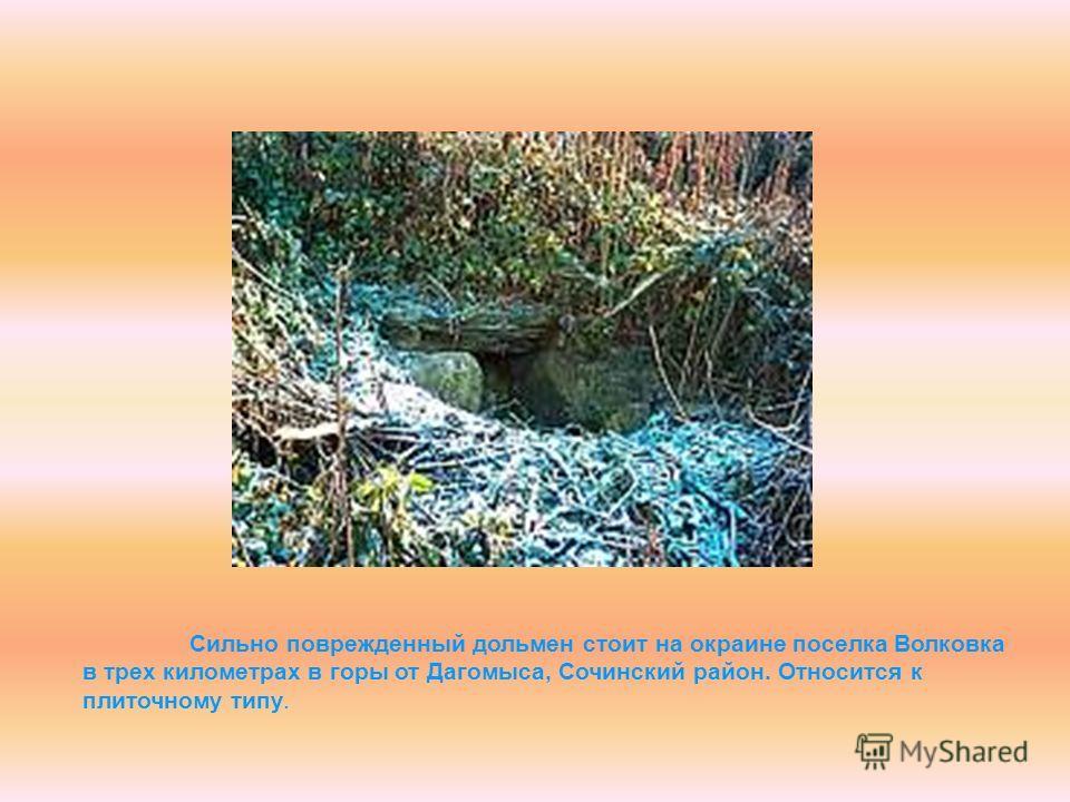Сильно поврежденный дольмен стоит на окраине поселка Волковка в трех километрах в горы от Дагомыса, Сочинский район. Относится к плиточному типу.