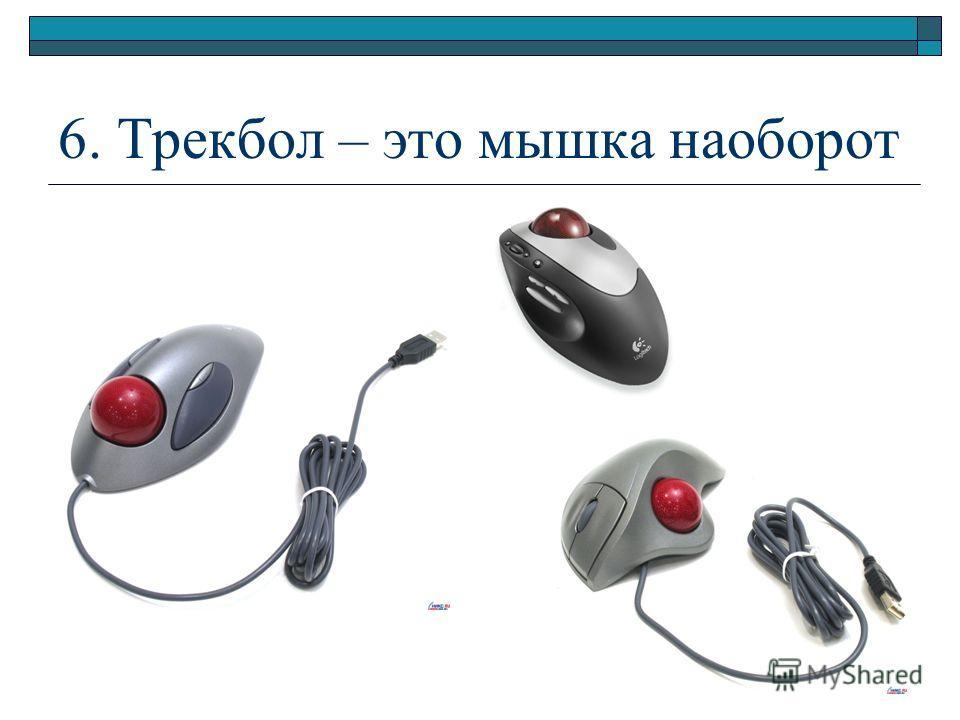 6. Трекбол – это мышка наоборот