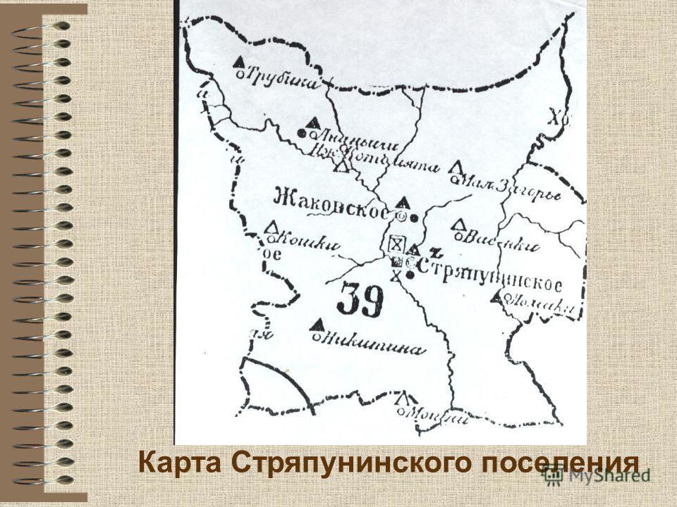 Карта Стряпунинского поселения
