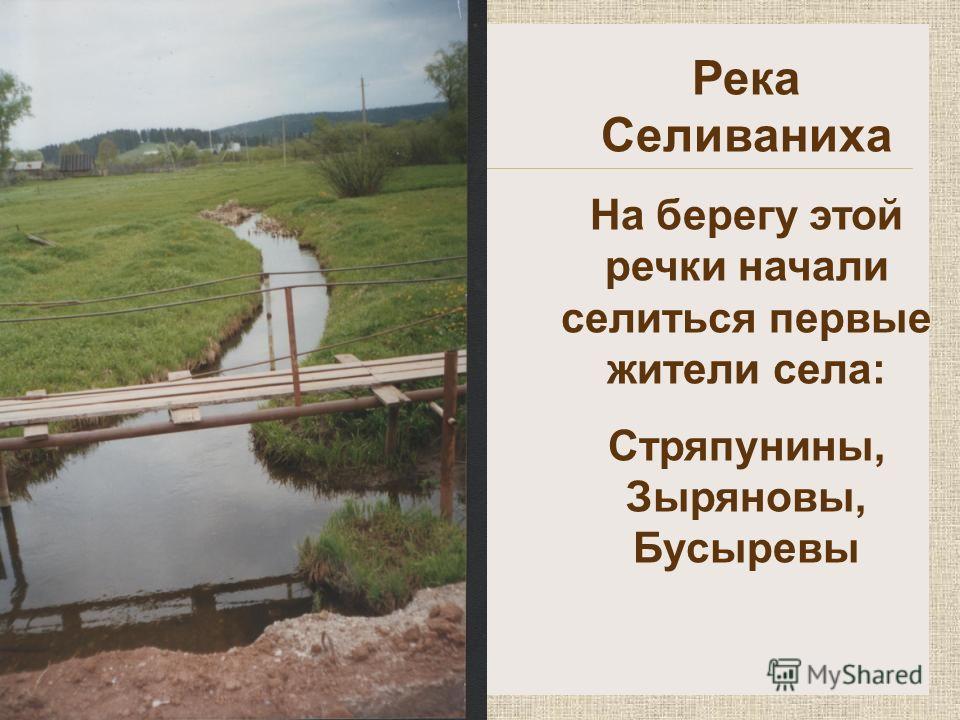Река Селиваниха На берегу этой речки начали селиться первые жители села: Стряпунины, Зыряновы, Бусыревы