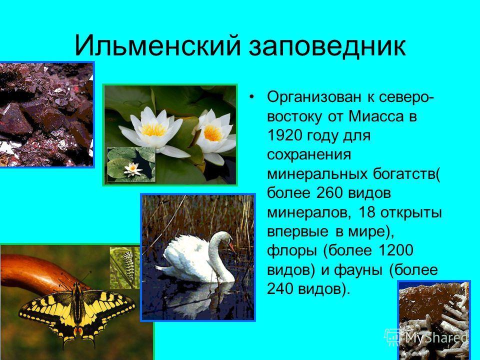 Ильменский заповедник Организован к северо- востоку от Миасса в 1920 году для сохранения минеральных богатств( более 260 видов минералов, 18 открыты впервые в мире), флоры (более 1200 видов) и фауны (более 240 видов).