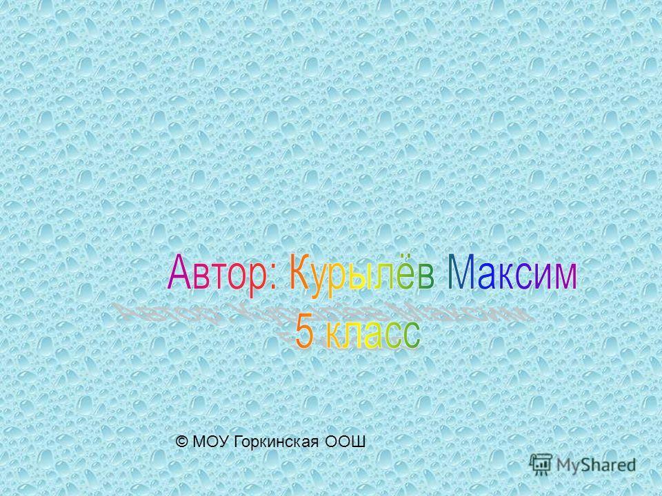 © МОУ Горкинская ООШ