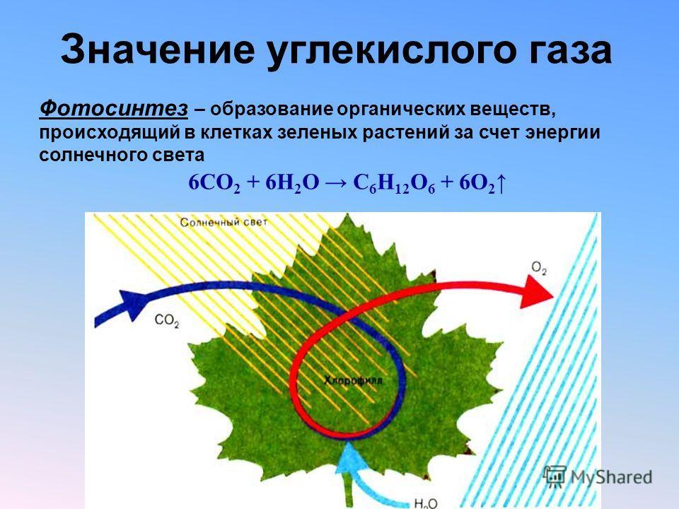 Значение углекислого газа Фотосинтез – образование органических веществ, происходящий в клетках зеленых растений за счет энергии солнечного света 6CO 2 + 6H 2 O C 6 H 12 O 6 + 6O 2