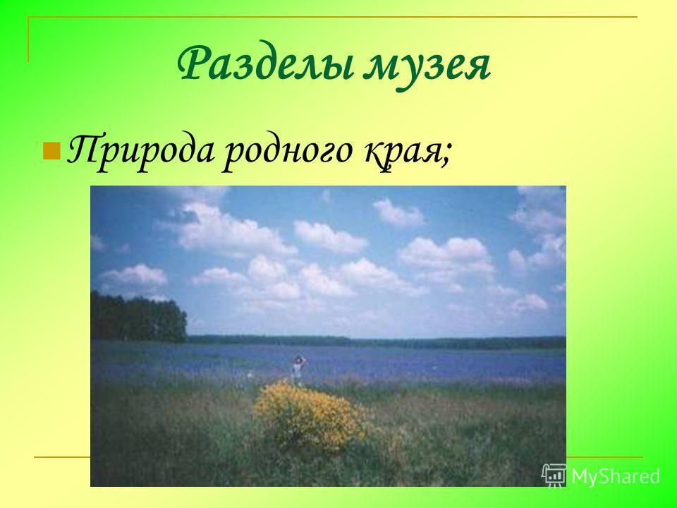 Разделы музея Природа родного края;