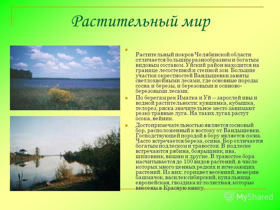 Растительный мир Растительный покров Челябинской области отличается большим разнообразием и богатым видовым составом. Уйский район находится на границе лесостепной и степной зон. Большие участки окрестностей Вандышевки заняты светлохвойными лесами, г