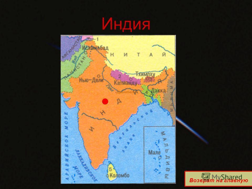 Индия «Душители» Возврат на главную