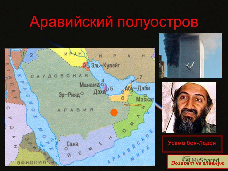 Аравийский полуостров «Аль-Каида» Возврат на главную Усама бен-Ладен