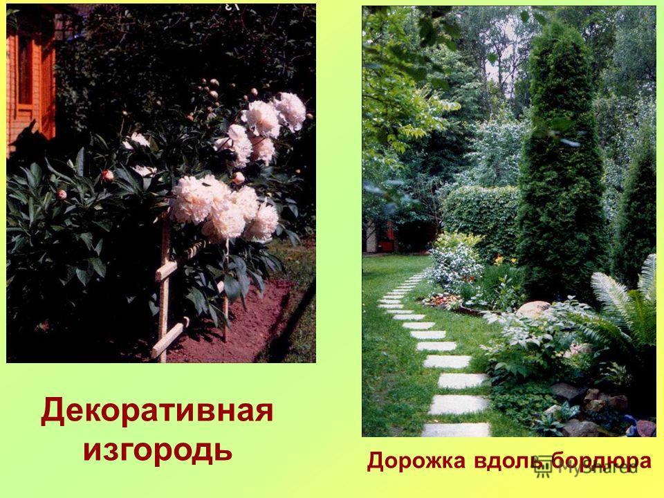 Декоративная изгородь Дорожка вдоль бордюра
