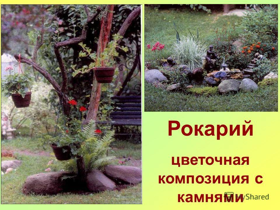Рокарий цветочная композиция с камнями