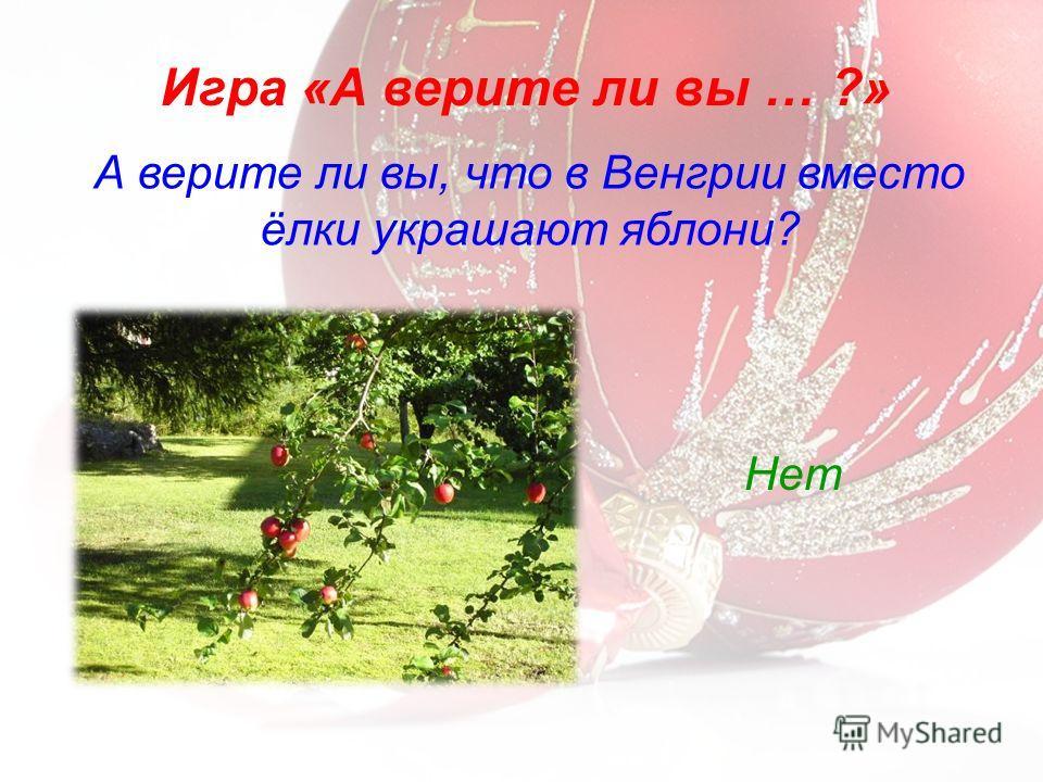 А верите ли вы, что в Венгрии вместо ёлки украшают яблони? Игра «А верите ли вы … ?» Нет