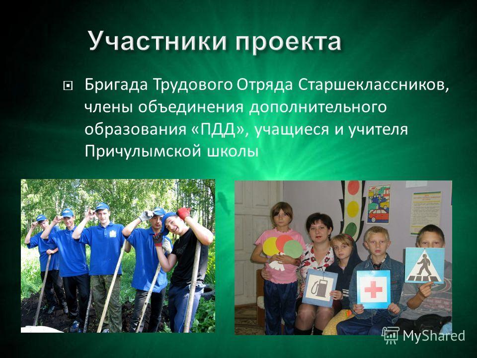 Бригада Трудового Отряда Старшеклассников, члены объединения дополнительного образования «ПДД», учащиеся и учителя Причулымской школы