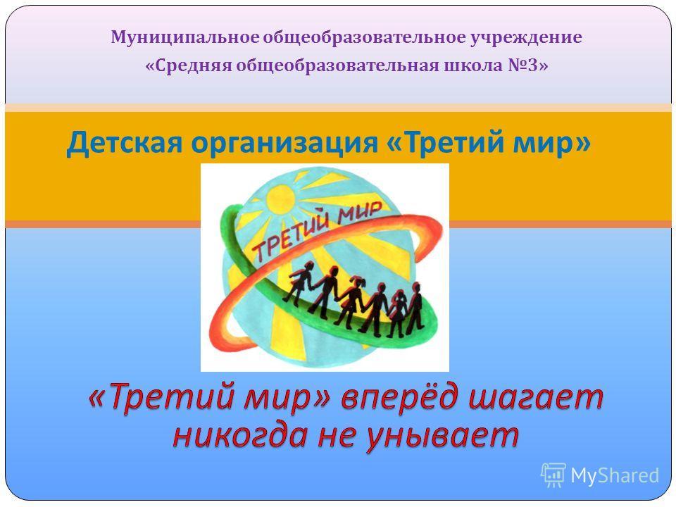 Муниципальное общеобразовательное учреждение « Средняя общеобразовательная школа 3» Детская организация « Третий мир »