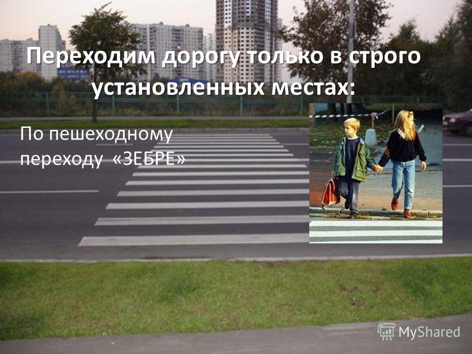 Переходим дорогу только в строго установленных местах: По пешеходному переходу «ЗЕБРЕ»