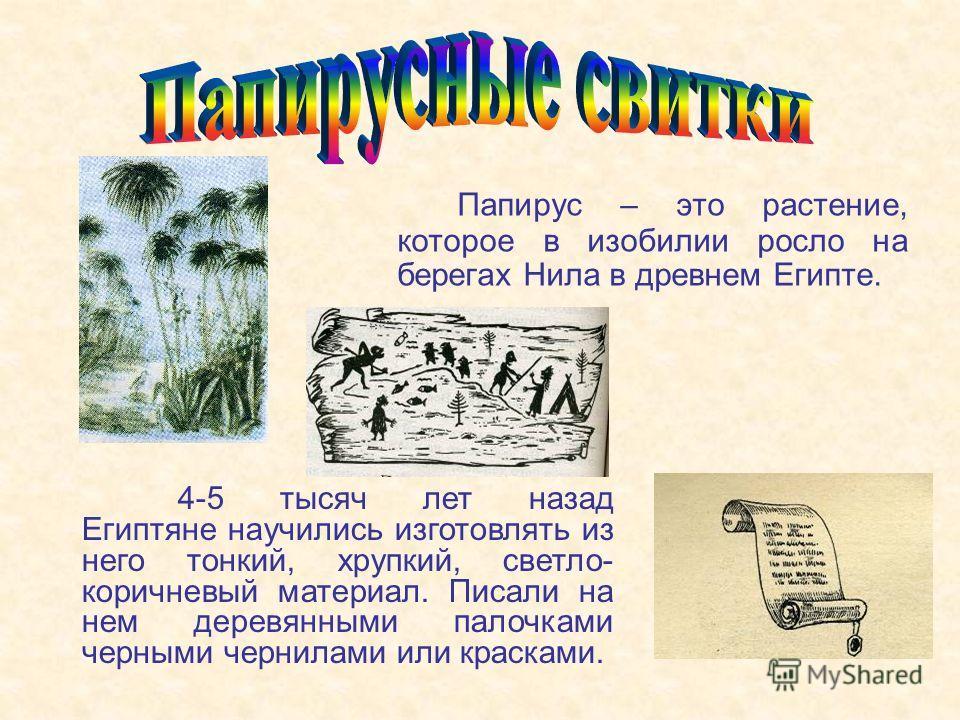 Папирус – это растение, которое в изобилии росло на берегах Нила в древнем Египте. 4-5 тысяч лет назад Египтяне научились изготовлять из него тонкий, хрупкий, светло- коричневый материал. Писали на нем деревянными палочками черными чернилами или крас