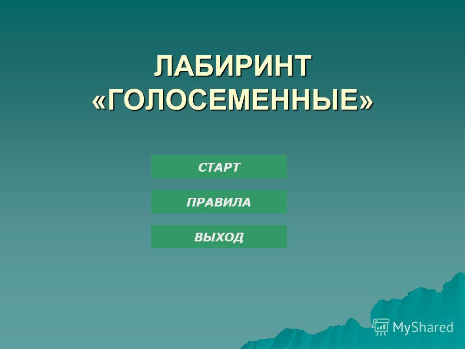 ЛАБИРИНТ «ГОЛОСЕМЕННЫЕ» СТАРТ ПРАВИЛА ВЫХОД