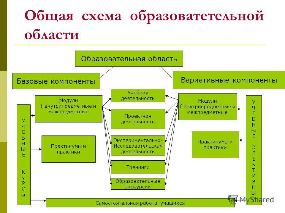 Общая схема образоватетельной области Образовательная область Базовые компоненты Вариативные компоненты Проектная деятельность Экспериментально- Исследовательская деятельность Тренинги Образовательные экскурсии Учебная деятельность Модули ( внутрипре