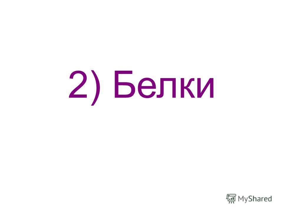 2) Белки