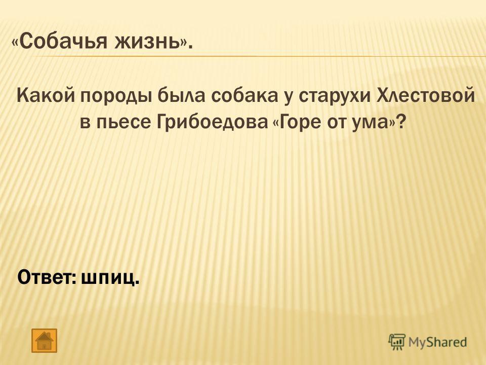 «Собачья жизнь». Какой породы была собака у старухи Хлестовой в пьесе Грибоедова «Горе от ума»? Ответ: шпиц.