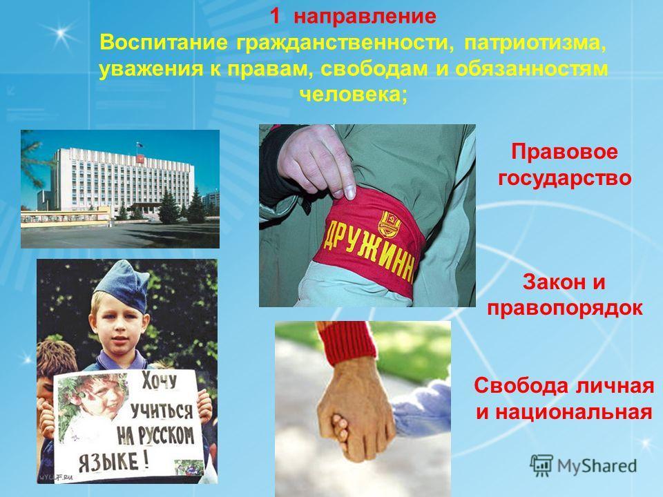 Каковы же наши традиционные источники нравственности? Это Россия, наш многонациональный народ и гражданское общество, семья, труд, искусство, наука, религия, природа¸ человечество. Соответственно этому и определяются направления воспитательной деятел