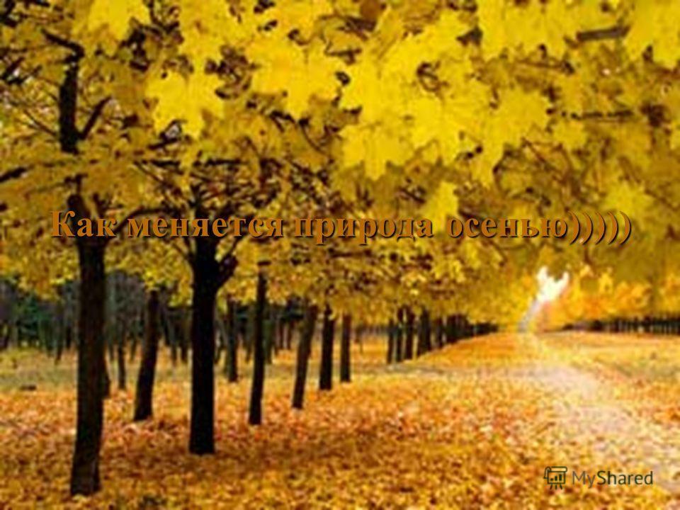 Как меняется природа осенью)))))