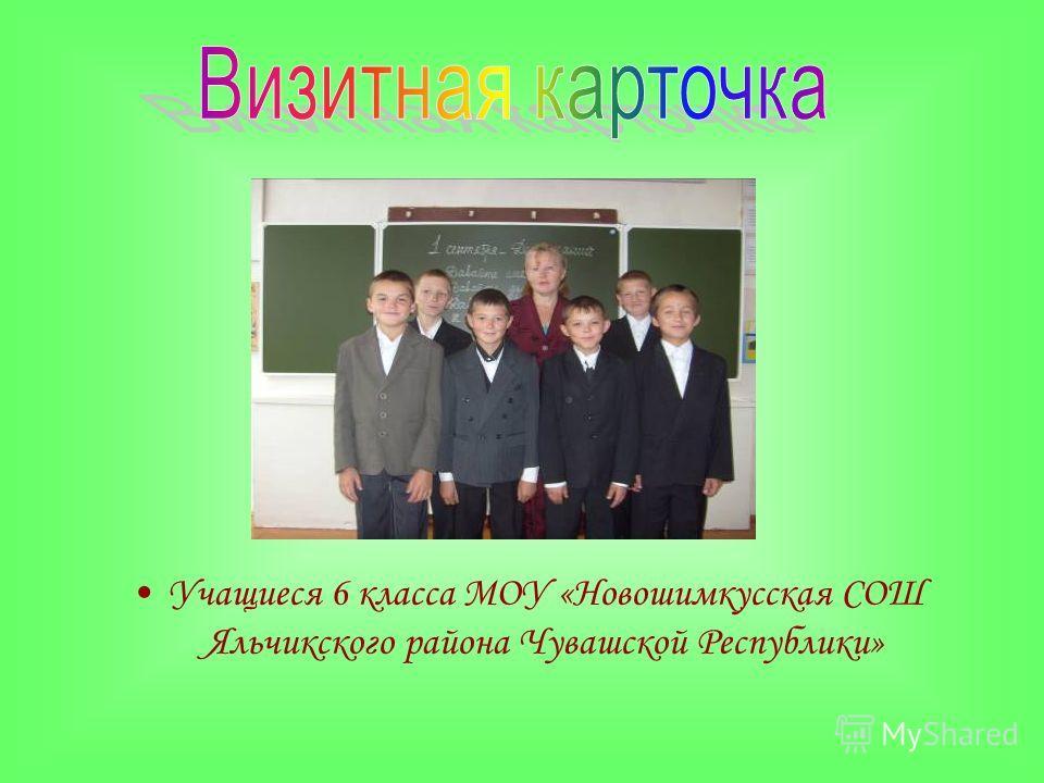 Учащиеся 6 класса МОУ «Новошимкусская СОШ Яльчикского района Чувашской Республики»