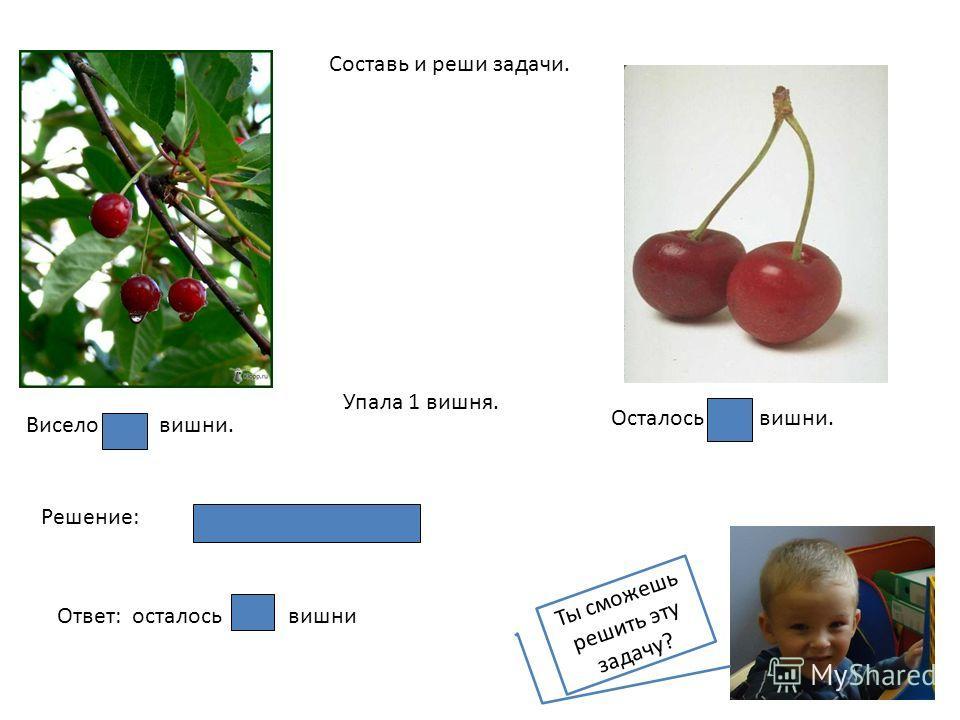 Составь и реши задачи. Висело вишни. Упала 1 вишня. Осталось вишни. Решение: Ответ: осталось вишни Ты сможешь решить эту задачу?