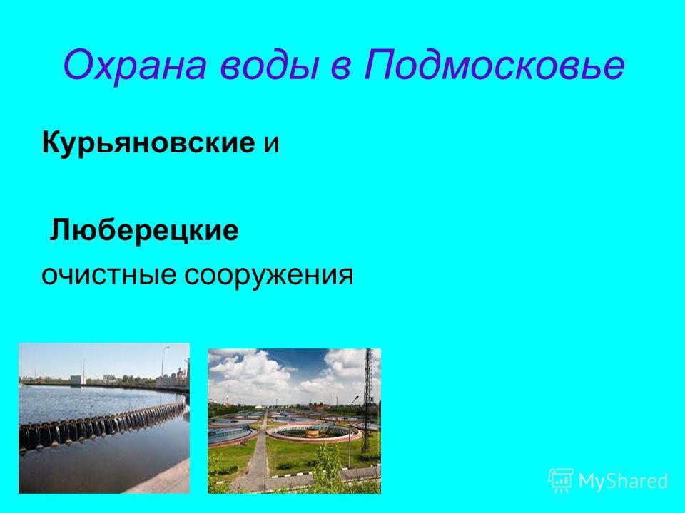 22 марта – Всемирный день водных ресурсов (Международный день Воды). 8 июня – Всемирный день океанов.