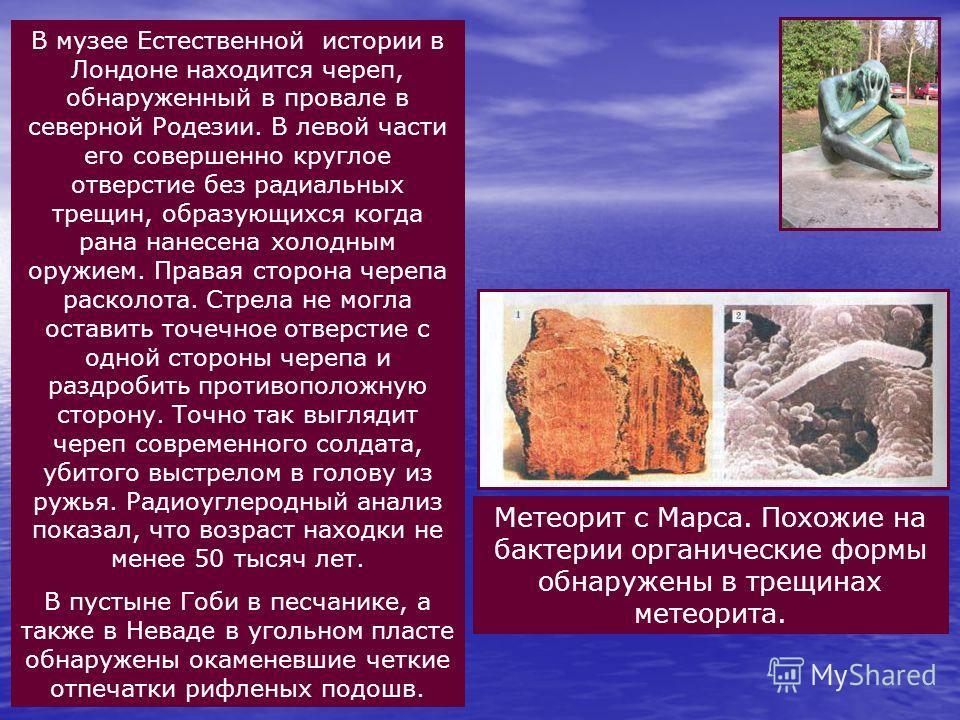 Метеорит с Марса. Похожие на бактерии органические формы обнаружены в трещинах метеорита. В музее Естественной истории в Лондоне находится череп, обнаруженный в провале в северной Родезии. В левой части его совершенно круглое отверстие без радиальных