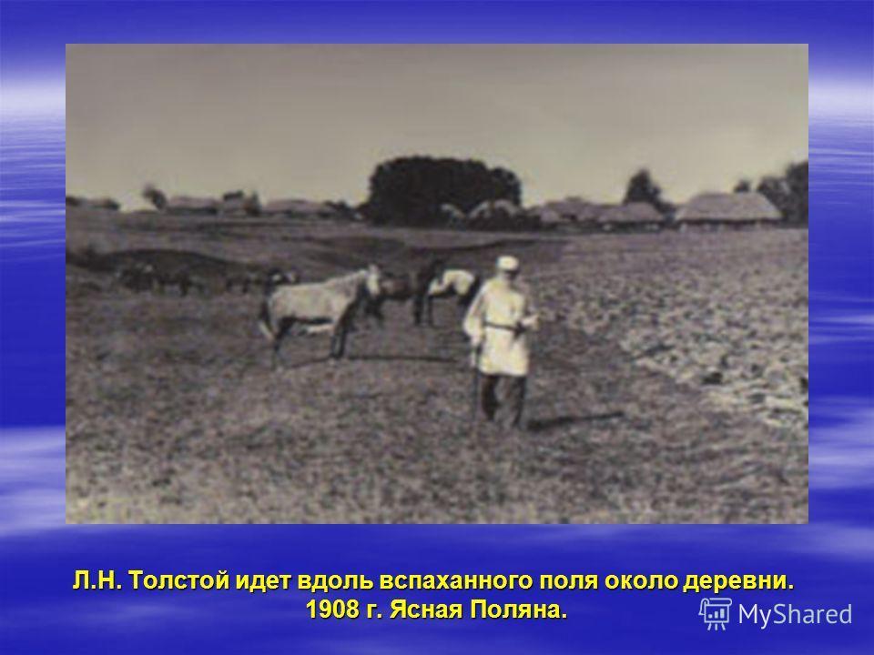 Л.Н. Толстой идет вдоль вспаханного поля около деревни. 1908 г. Ясная Поляна.