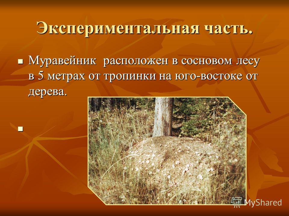 Экспериментальная часть. Муравейник расположен в сосновом лесу в 5 метрах от тропинки на юго-востоке от дерева. Муравейник расположен в сосновом лесу в 5 метрах от тропинки на юго-востоке от дерева.