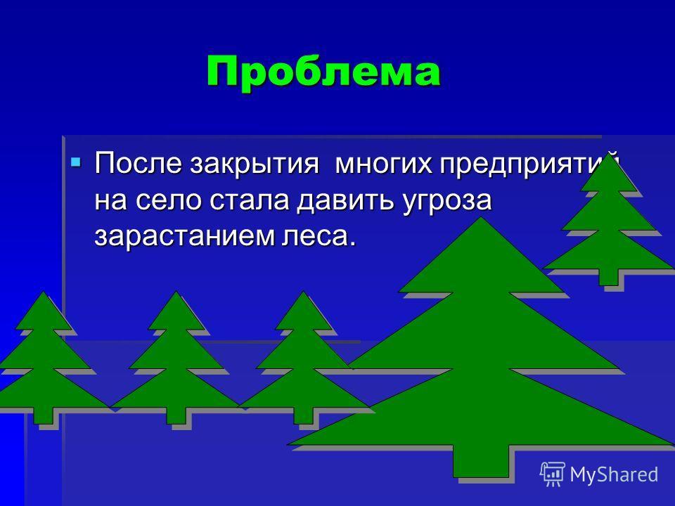 Проблема Проблема После закрытия многих предприятий на село стала давить угроза зарастанием леса. После закрытия многих предприятий на село стала давить угроза зарастанием леса.